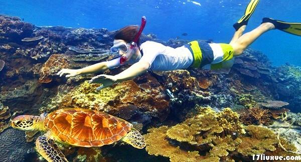 礁区海底地形复杂,有穿过礁区与现代河口相连的许多谷地,这是古代陆上
